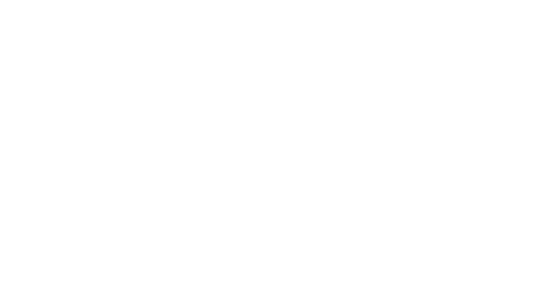 New Economics for Women logo